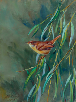 Little Bird Friend, Carolina Wren2