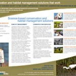 CAS Conservation Services brochure link