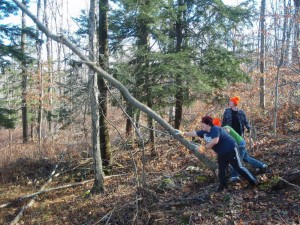 Croft winterim forman school students manage habitat