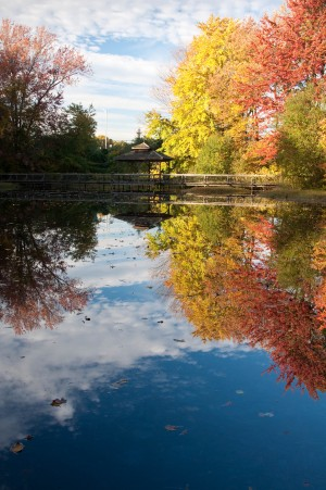 The pond at Birdcraft Sanctuary on a gorgeous fall day