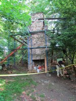 Renovations on the Chimney Swift Tower are now complete!