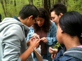CAS Education Director Michelle Eckman, center, helps students identify a specimen. Photo Copyright Connecticut Audubon Society