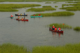 Canoe tour at CAS Coastal Center_by Frank Gallo