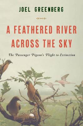 P3 book cover-1