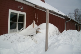 Snow drifts are as high as the window sills at the Center at Pomfret. Connecticut Audubon Society photo.