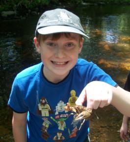 Crayfish Anyone