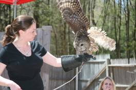 Tricia Kevalis with Lucy Barred Owl