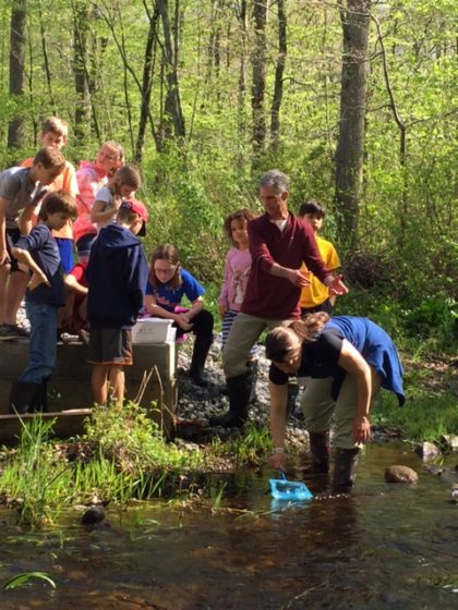 Searching for macroinvertebrates to identify with the Creek Critters app. Connecticut Audubon photo by Eleanor Robinson