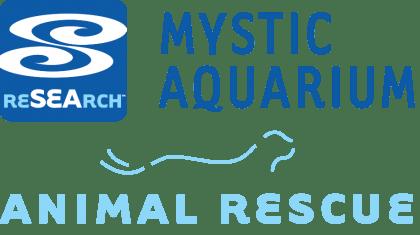 mystic-animal-rescue
