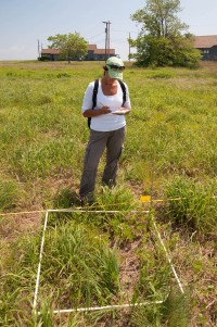 Jennifer Gazerro, a graduate student from Sacred Heart University records plant data from a sample quadrant at Stratford Point