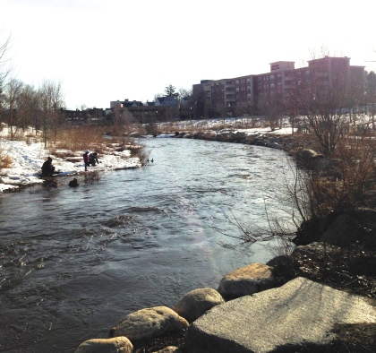 The Mill River Park and Greenway in Stamford benefited from Community Investment Act funds. Connecticut Audubon Society photo.