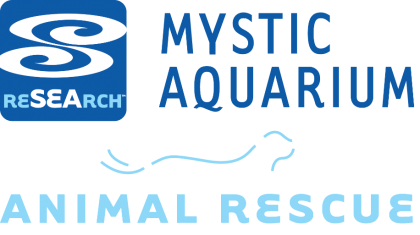 mystic-animal-rescue