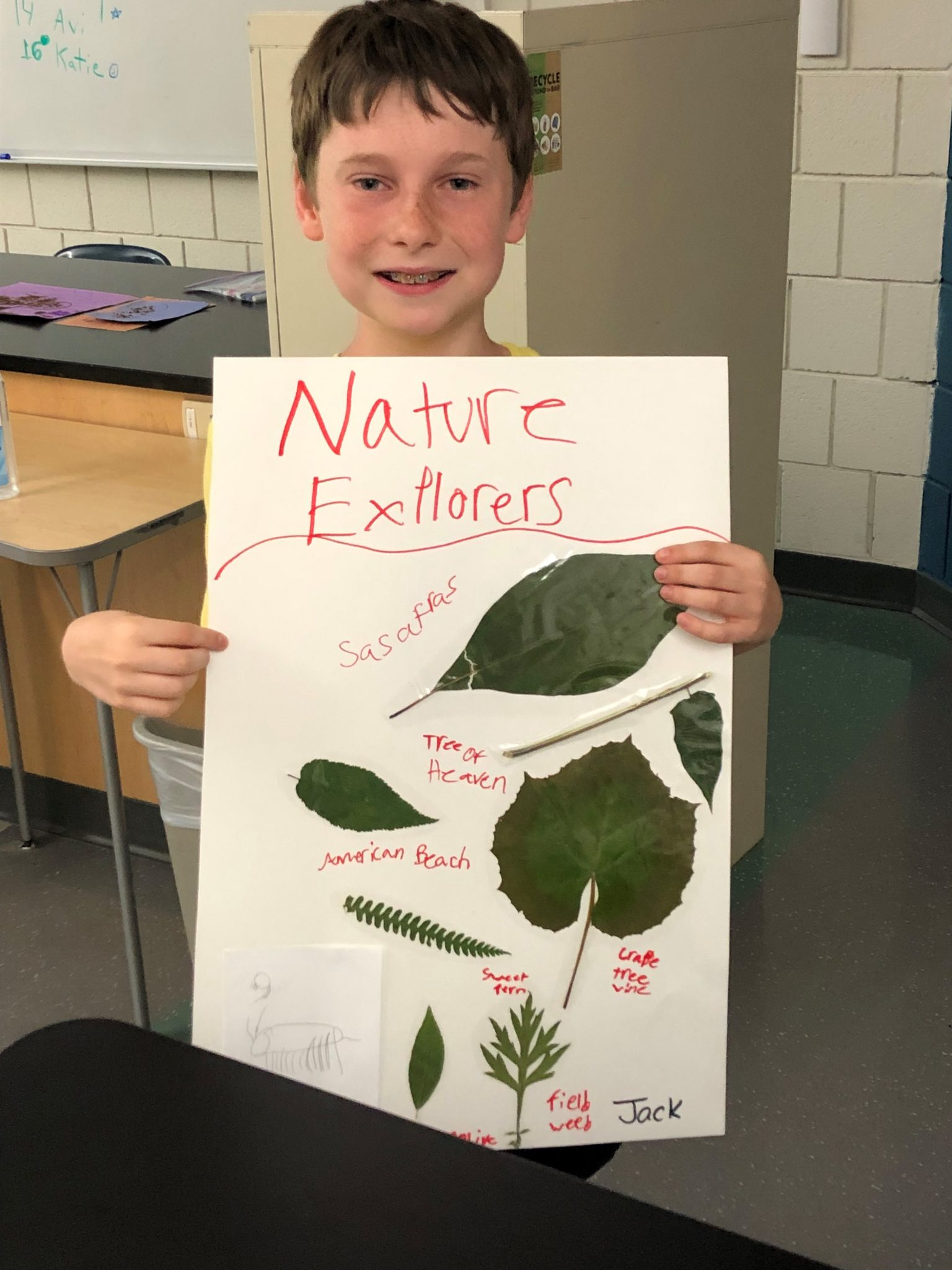 nature explorers camp poster