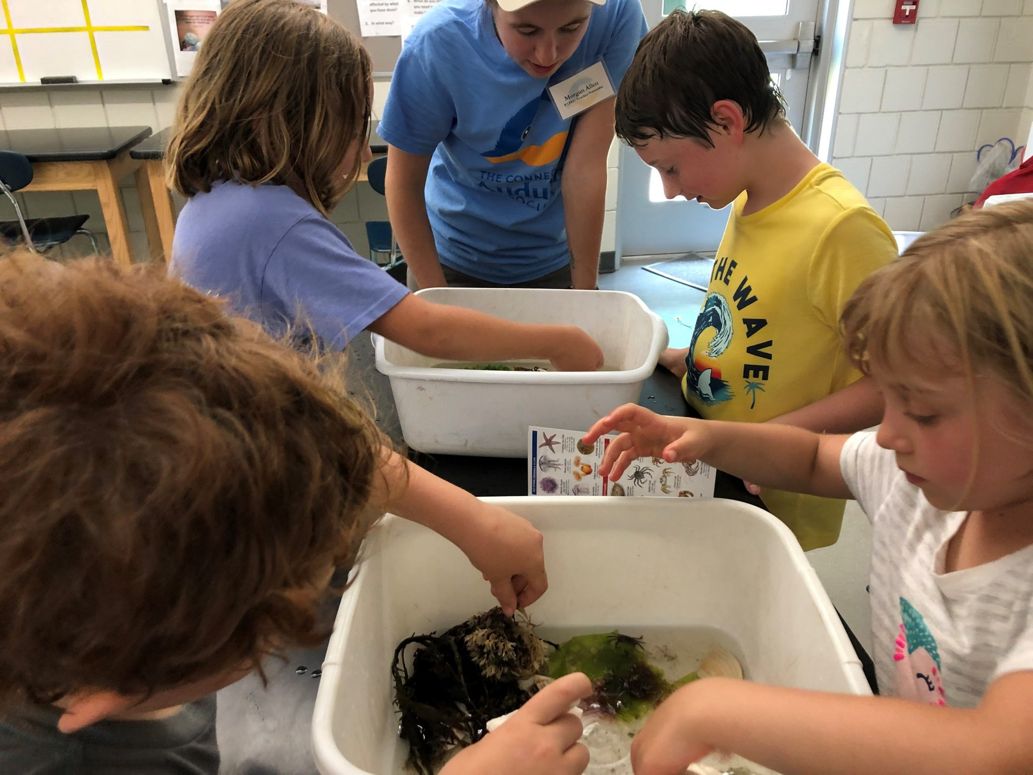 touch tank exploration