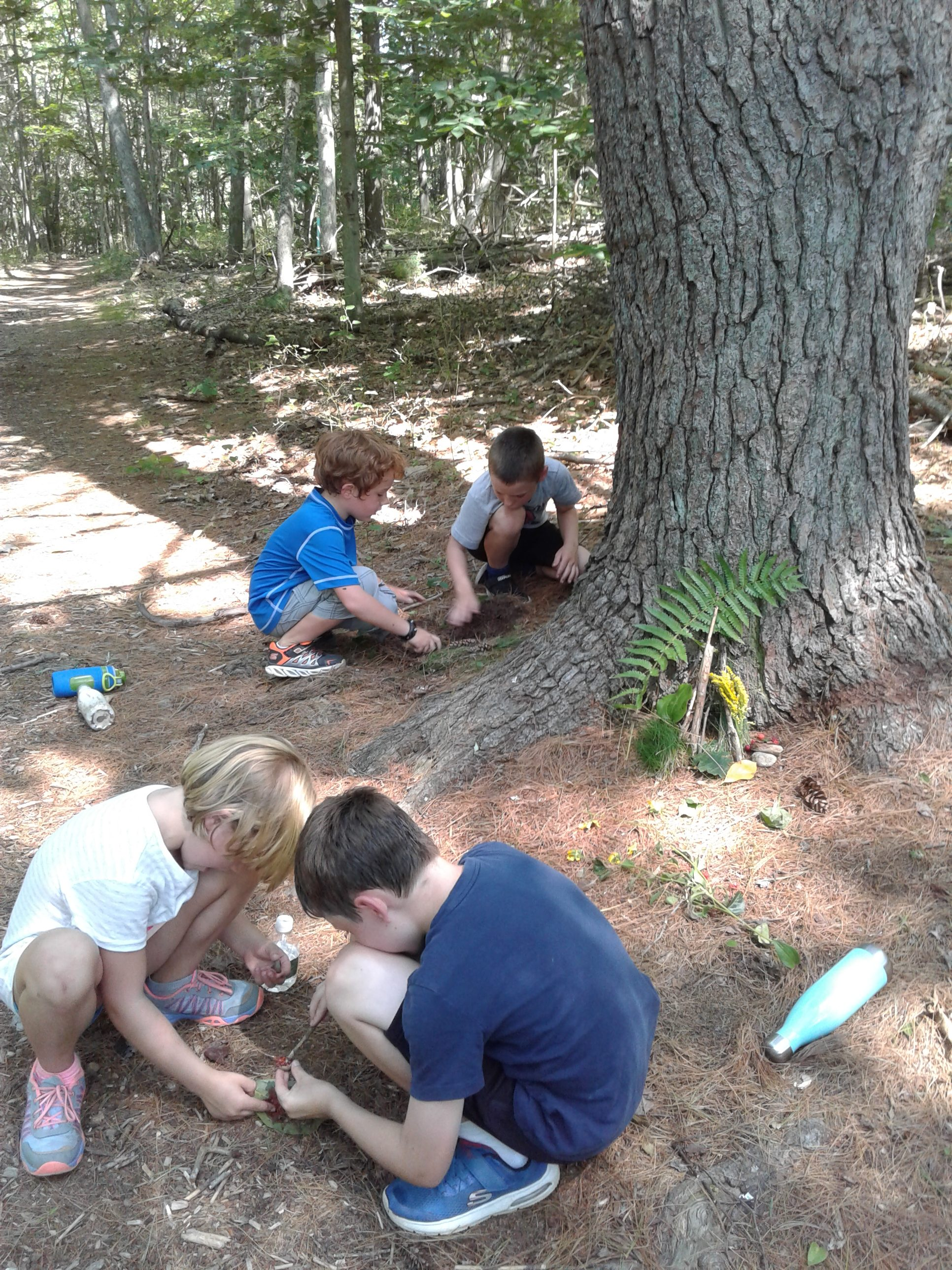 building fairy houses