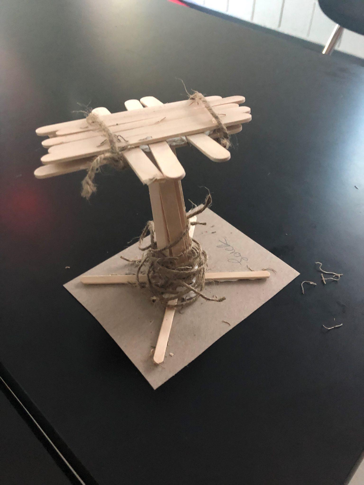 osprey nest final outcome 2